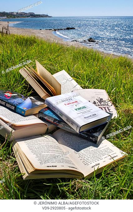 Lots of books at the beach. Costa del Sol, Málaga province. Andalusia, Southern Spain Europe
