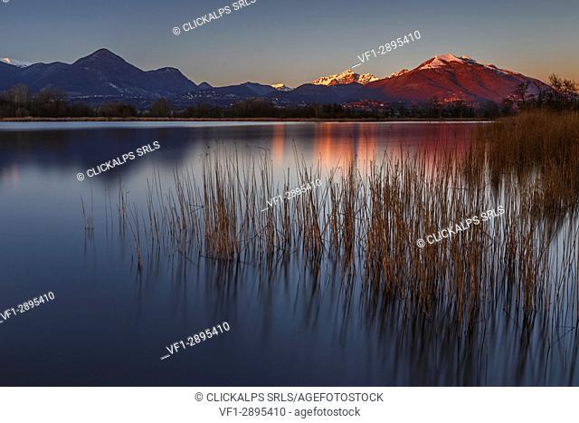 Sunset Lake Alserio, Como province, Brianza, Lombardy, Italy, Europe