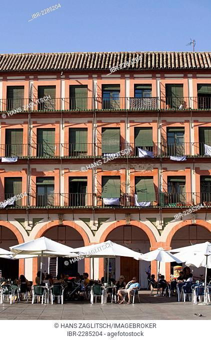 Plaza de la Corredera square, Cordoba, Andalusia, Spain, Europe