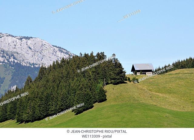 Plateau des Glières, Alps, France