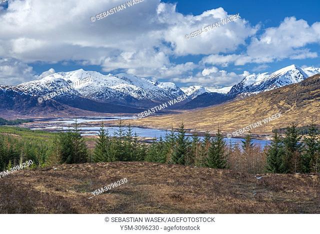 Loch Loyne, Highland, Scotland, United Kingdom, Europe