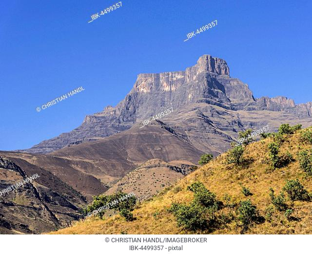 Amphitheatre with Mount Eastern Buttres, Royal Natal National Park, KwaZulu-Natal, South Africa