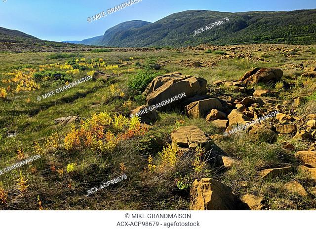 Tablelands showing the Earth's mantle made up of Peridotite which is high in iron Gros Morne National Park Newfoundland & Labrador Canada