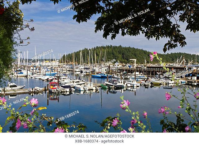 Views of the small harbor town of Friday Harbor on San Juan Island, Washington State, USA