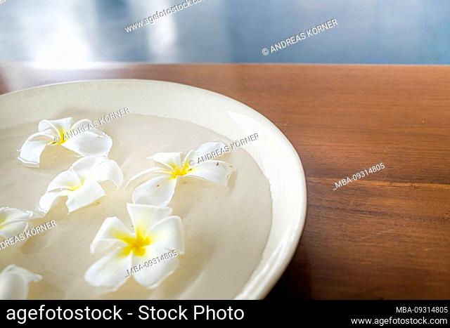 Blossoms in a water cup on wooden table