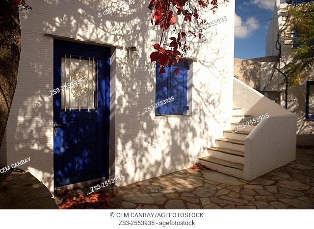 Whitewashed house with blue door in Volax village, Tinos Island, Cyclades Islands, Greek Islands, Greece, Europe