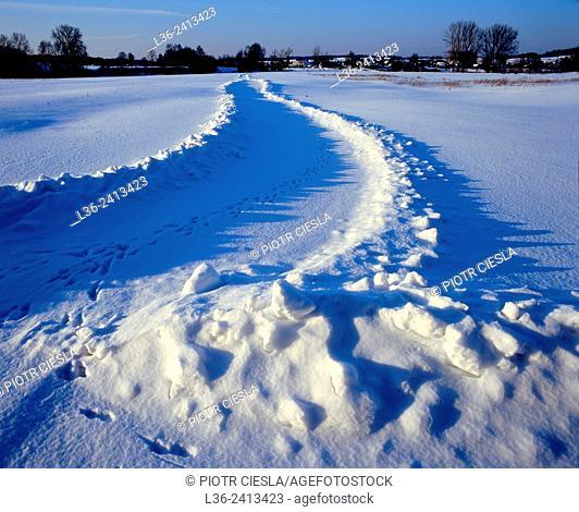 Winter villiage road. Podlasie region. Poland