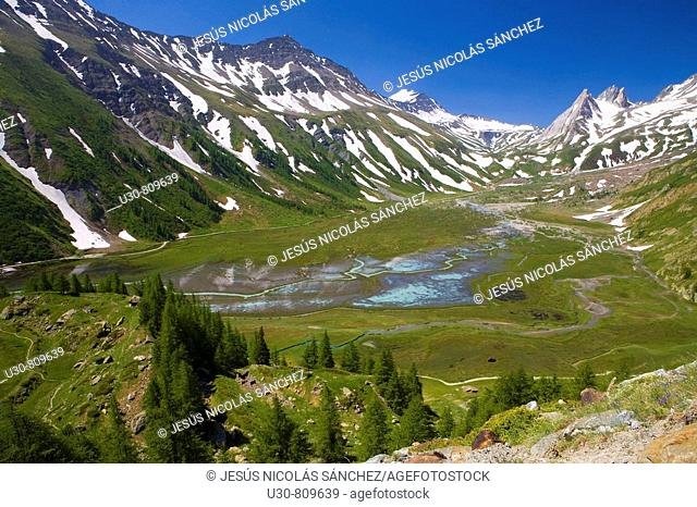 Lake Combal. Trees and glacial moraines in Glacier Miage in the massif of Mont Blanc or Monte Bianco in the Italian Alps. Italy, Europe