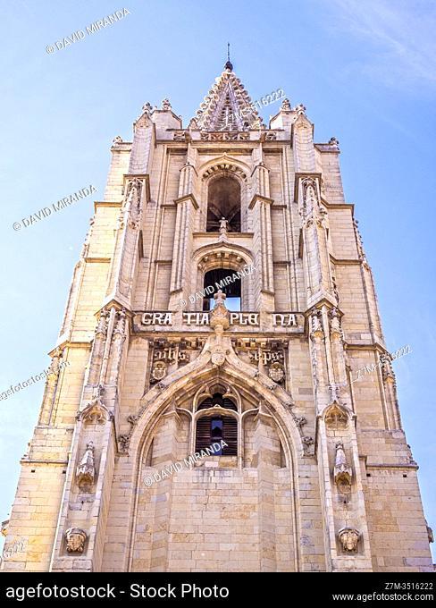 Torre de la Catedral de León. Castilla León. España