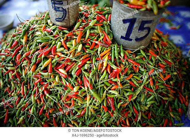 Closeup of chile peppers for sale at a market near the Longneck village Approximately 300 Burmese refugees in Thailand are members of the indigenous group known...