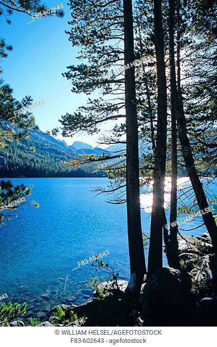 Shadow Lake. Ansel Adams Wilderness. Sierra Nevada Mountains. California. USA