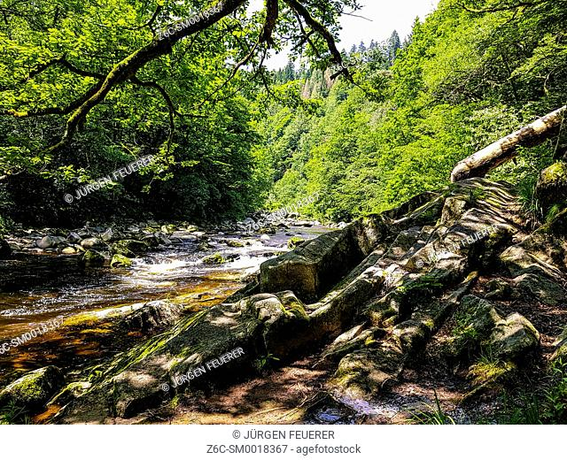 river, wilderness, countryside, stream, creek, mountain, summer, scenery, German, Europe, European, daytime, outdoors, horizontal, no people, destination