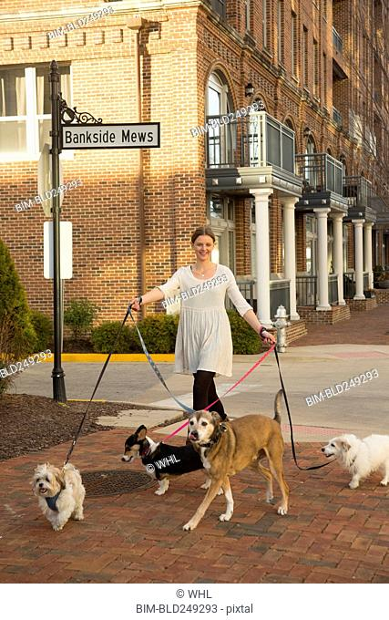 Caucasian woman walking dogs in city