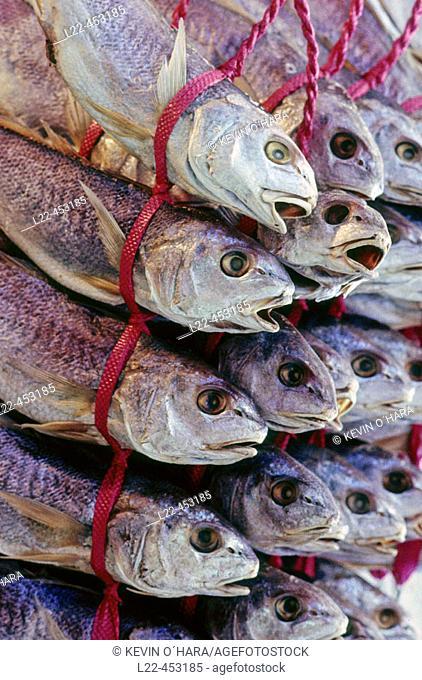 Pusan's huge fish market. Pusan is Korea's principal port and the second largest city. Republic of Korea. Asia