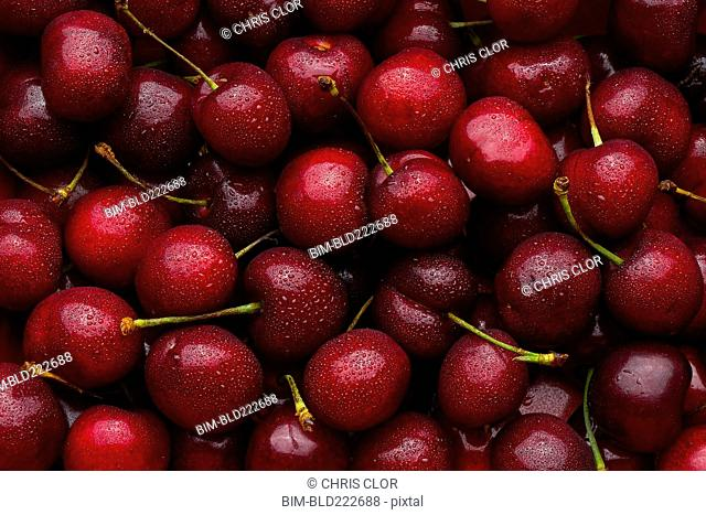 Pile of wet red cherries