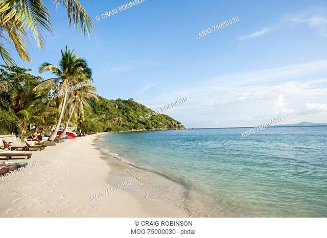 Beach and palm trees on Koh Pha Ngan, Thailand