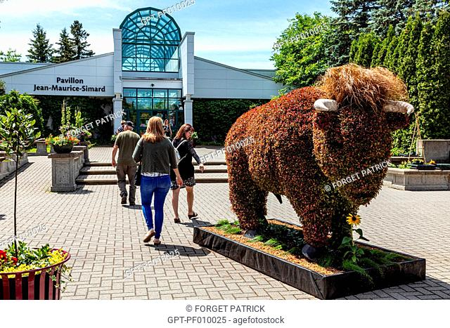 VEGETAL SCULPTURE OF A BULL AT THE ENTRANCE, BOTANICAL GARDEN, MOSAICULTURE, EDMUNDSTON, NEW BRUNSWICK, CANADA, NORTH AMERICA