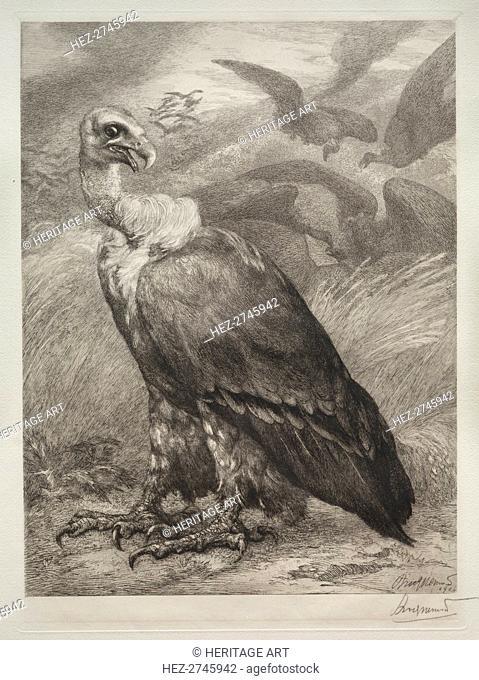 The Vulture, 1904. Creator: Félix Bracquemond (French, 1833-1914); Emil Dolot (Société des amis de l'estampes français)