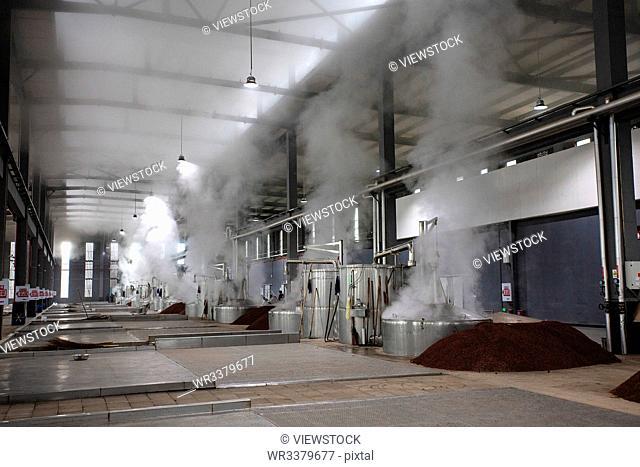 Chongqing liquor factory workshop