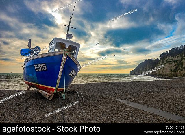 A fishing boat on the beach at Beer, Devon, England. Uk