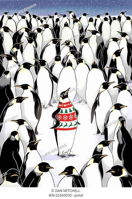 Penguin standing out from the crowd wearing patterned pullover