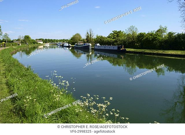 Boat moorings and people walking the towpath of the tranquil Gloucester & Sharpness Canal at Purton in summer sunshine, Gloucestershire, UK