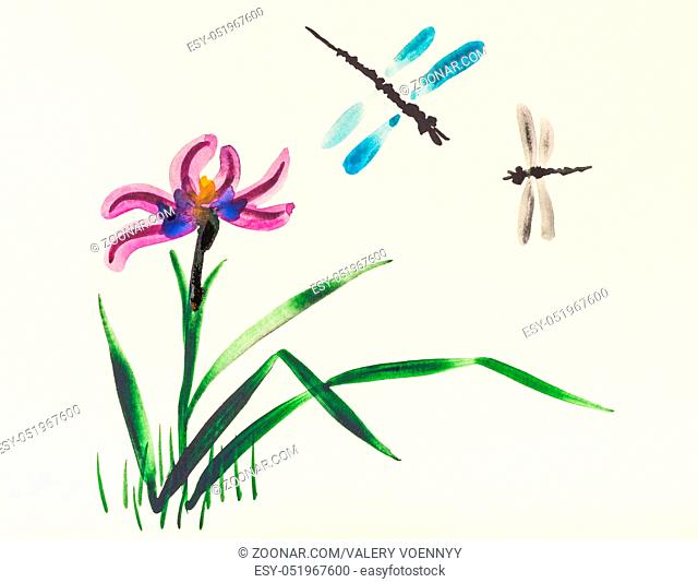 training drawing in suibokuga style with watercolor paints - Two dragonflies over iris flower on meadow in summer on ivory colored paper