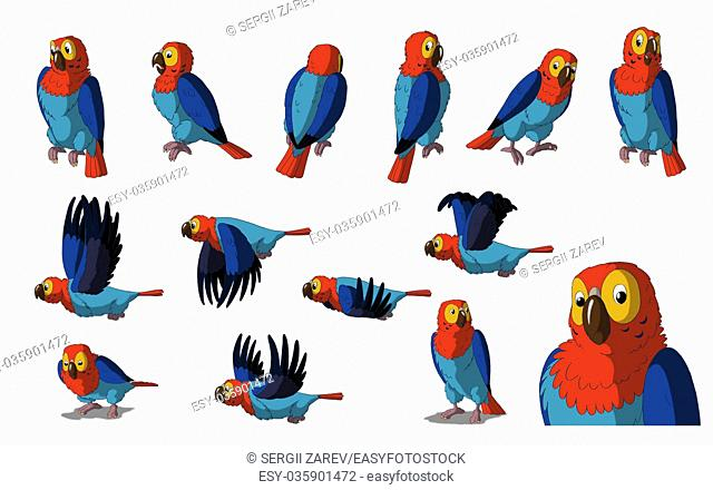 Set of Macaw Parrot images. Digital painting full color cartoon style illustration isolated on white background