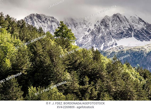 Oza Valley also called Selva de Oza, Valles Occidentales Nature Park, Huesca Pyrenees. Aragon, Spain