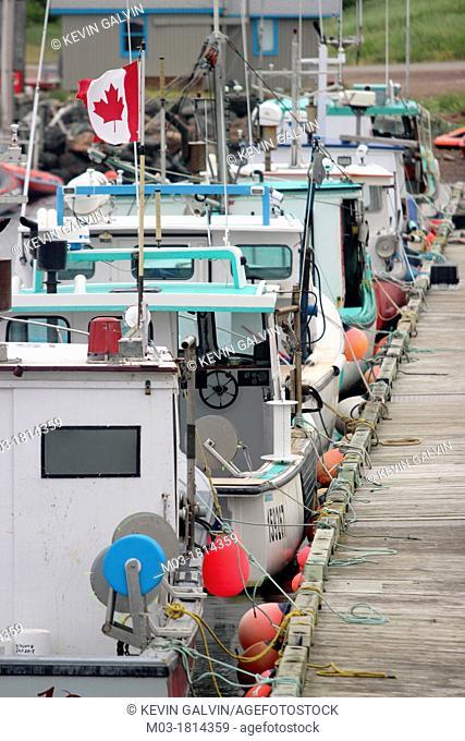 Atlantic Coast , Cabot trail , Canada , Canadian maritimes , Cape Breton , Dock , Fish , Fishing boats , Flag. , Harbor , Harbour , Limbo Cove , Lobster boats