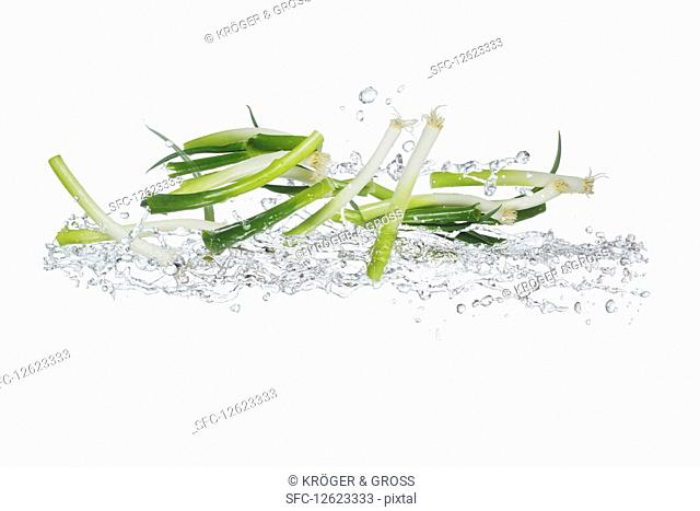 Spring onions with a splash of water