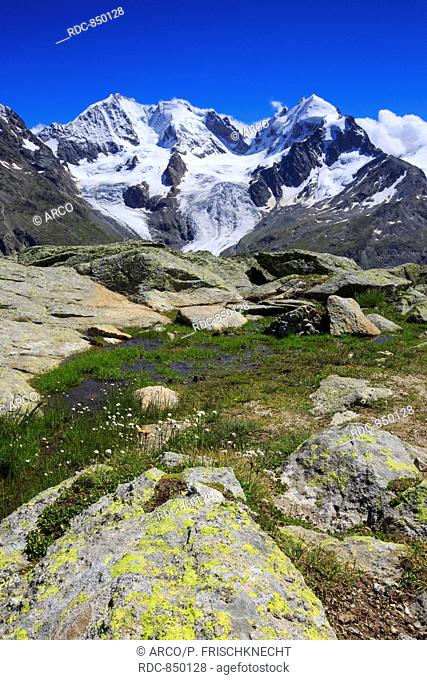 Piz Tschierva, 3546 m, Piz Bernina, 4049 m, Biancograt, Piz Roseg, 3937 m, Graubuenden, Schweiz
