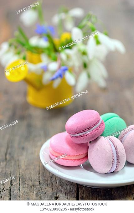 Colorful French Macarons and spring flowers on wooden background
