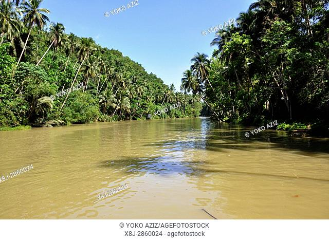 Philippines, Visayas island, Loboc river