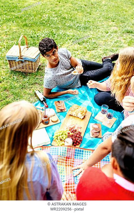 High angle view of friends enjoying picnic at park