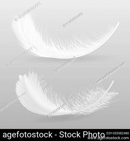 Angel Flight Down Stock Photos And Images Agefotostock