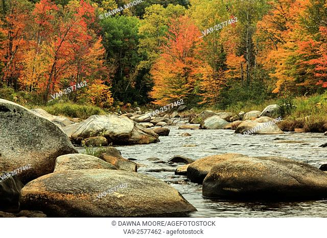 Fall colors at the Israel River, Route 142, New Hampshire