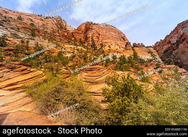 Mountain viewpoint Landscape in Zion national park in Zion Utah United States. USA American National Park Landscape travel destinations and tourism concept