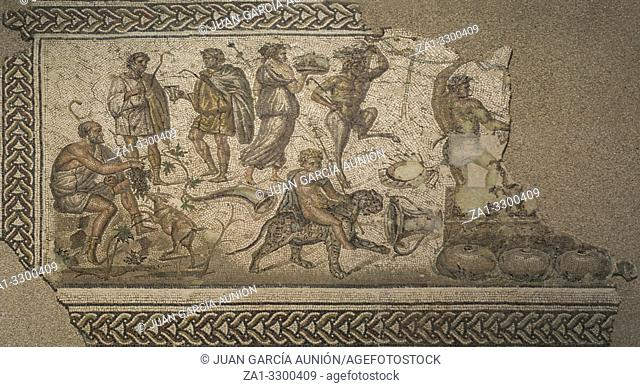 Bacchic Mosaic of The Gift of Wine at Ecija History Museum, Spain