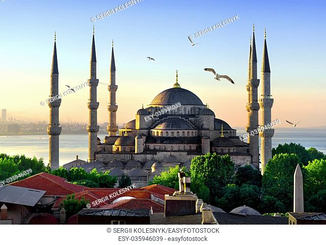 View on Blue Mosque and Sea of Marmara in Istanbul at sunrise, Turkey
