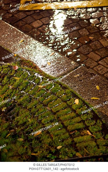 france, ile de france, paris, 14e arrondissement, nuit, matin, place denfert rochereau, grille au pied d'un arbre, nature