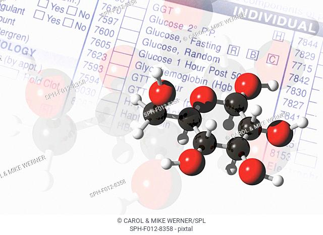Molecular models of glucose with testing request form