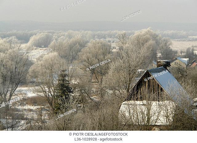 Frosty morning  Eastern Poland  Podlasie region