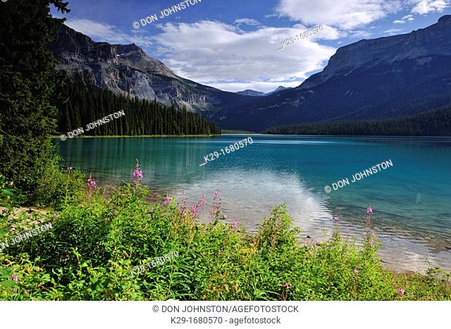 Emerald Lake, with fireweed, Yoho National Park, British Columbia, Canada