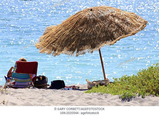 a grass beach umbrella at Venice Beach, Florida, USA
