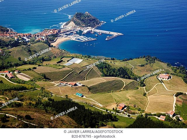 'Txacoli' vineyards and wineries, Getaria, Guipuzcoa, Basque Country, Spain