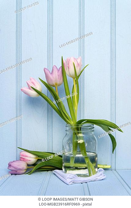 Beautiful Spring flower still life with wooden background
