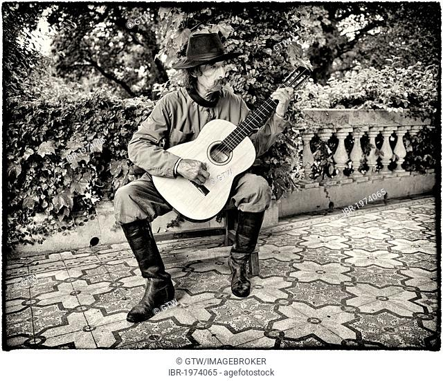 Gaucho singing and playing guitar, San Antonio de Areco, Buenos Aires Province, Argentina, South America