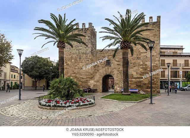 Alcudia, Mallorca, Balearic Islands, Spain, Europe