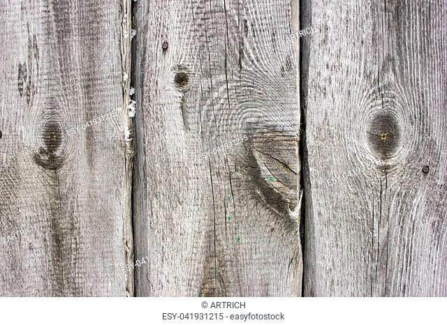 Texture old wood texture with natural pattern or texture of the old wood. White surface with wood texture. Organic wood texture background
